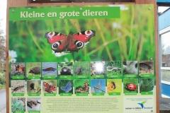 Natuurinformatiepunt Bultpark en Waterborden